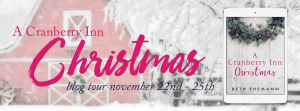 cranberry-inn-christmas-blog-tour-banner