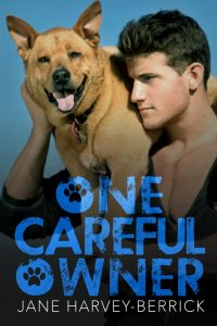 Book review: One Careful Owner ~ Jane Harvey-Berrick