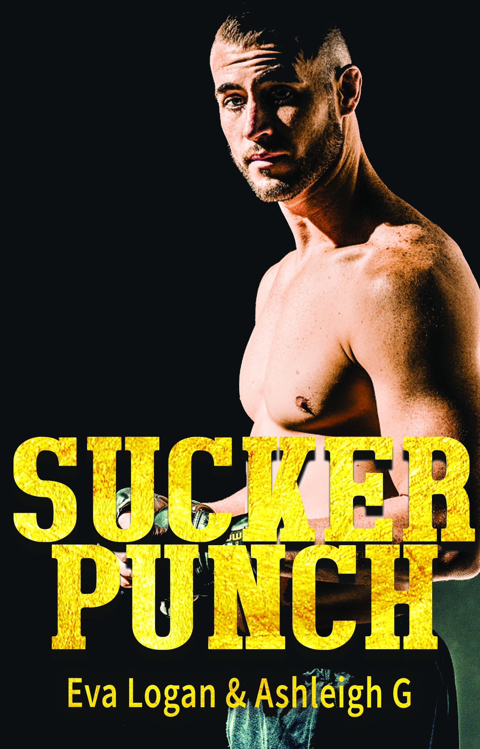 Sucker Punch by Ashleigh Giannoccaro, Eva Logan