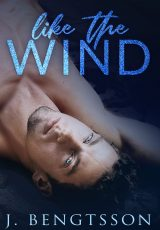 Book review: Like the Wind ~ J. Bengtsson